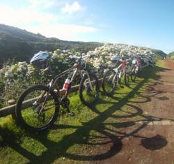 MD BTT Tours - Passeio na Costa | Terceira