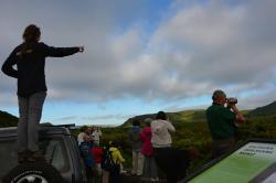 TD Jeep Tour c/almoço |  Terceira