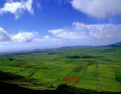 MD BTT Tours - Passeio na Costa   Terceira
